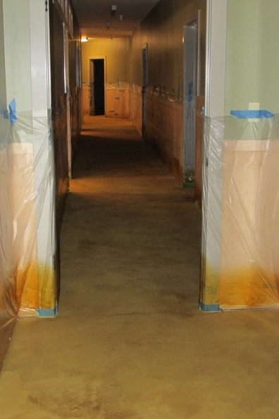 Basement floor being stained