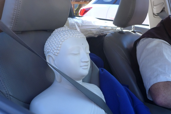 Protecting the Buddharupa for the Thanksgiving retreat