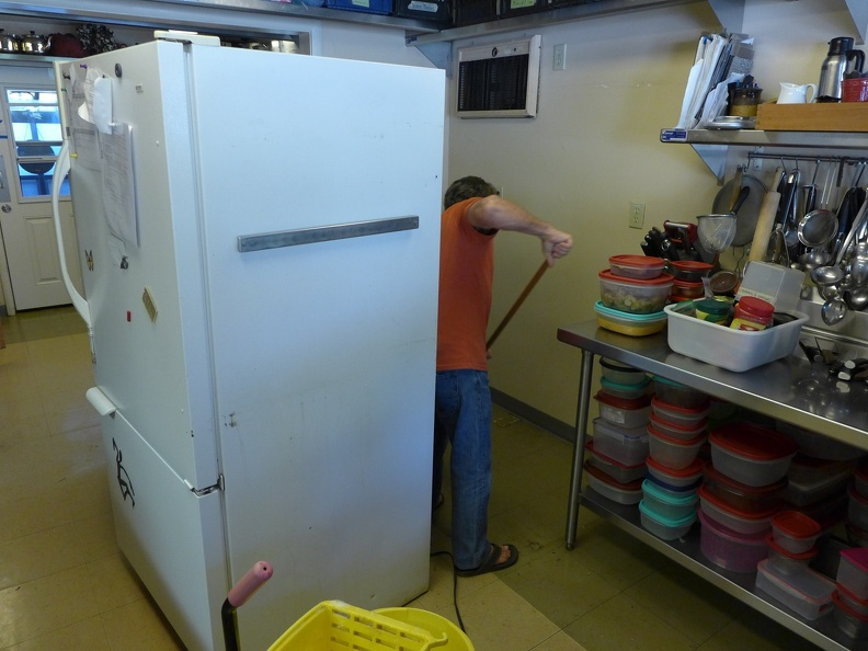 6 Further ant prevention - Clean under the fridge!.JPG