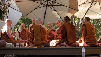 Among the Bhikkhu Assembly