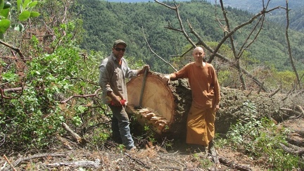 Ajahn Nyaniko with Eric, who helped fell the Madrone