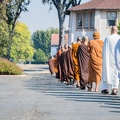 CTTB and Abhayagiri monks together, walking to the meal