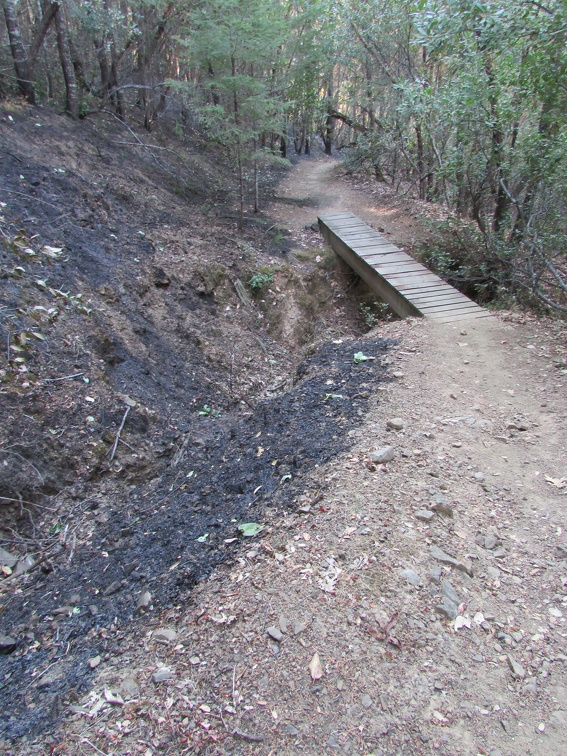 In most places the Loop Trail prevented the fire from advancing into the monastery