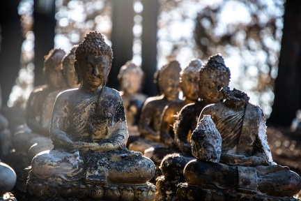 33 of these Buddha images were collected in total.