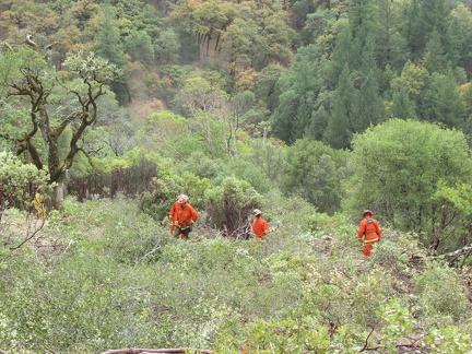 Hard at work, protecting the land