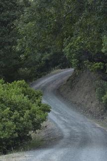11 Road Uphill