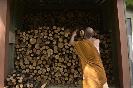 13 Stockpiling Wood