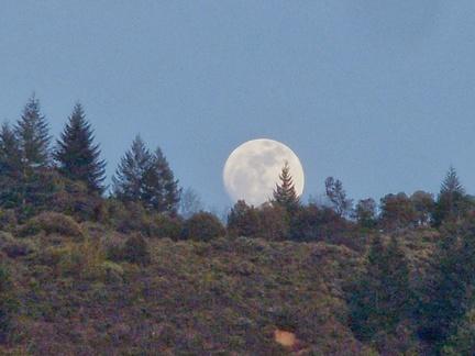 075) ABM Moon