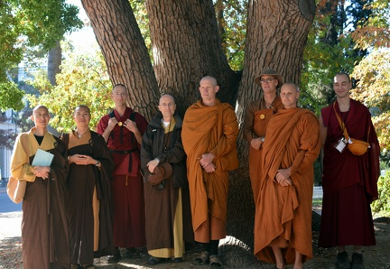 113) Some of the Bhikkhus, Bhikshus and Samaneras at the 19th BMG