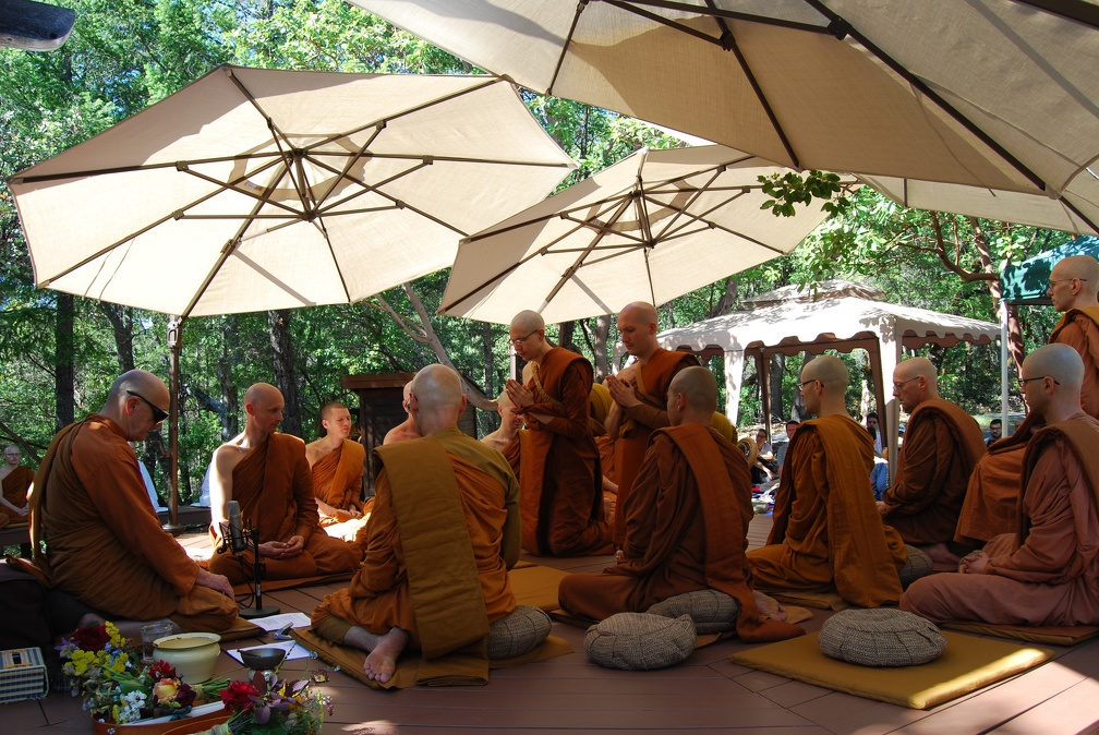 The Sāmaṇeras approach Luang Por