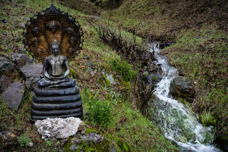 An outdoor Buddha image beside a freshly-swollen creek in early February.